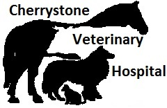 Cherrystone Veterinary Hospital